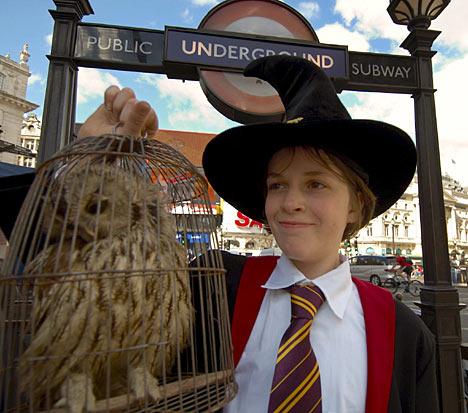 Fanatica de Harry Potter