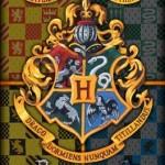 Real academia Harry-Potter-Towel-03-150x150