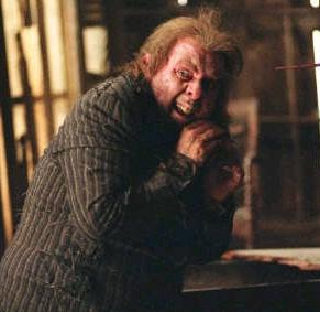 Harry Potter Peter Pettigrew