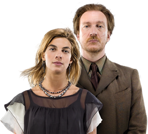 Harry Potter Remus y Tonks