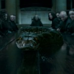 Harry-Potter-and-The-Deathly-Hallows-Cap--00192