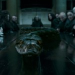 Harry-Potter-and-The-Deathly-Hallows-Cap--00193