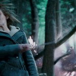 Harry-Potter-and-The-Deathly-Hallows-Cap--00286