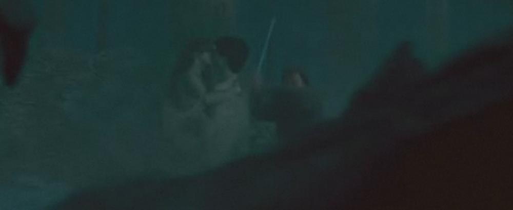 Harry Potter BlogHogwarts Beso Harry Hermione Reliquias Muerte Parte I