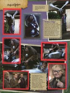 Harry Potter BlogHogwarts Panini 07
