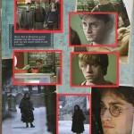 Harry Potter BlogHogwarts Panini 08