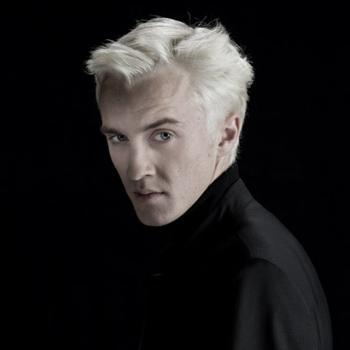 Harry Potter BlogHogwarts Tom Felton