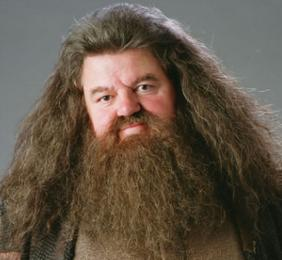 Harry Potter BlogHogwarts Hagrid