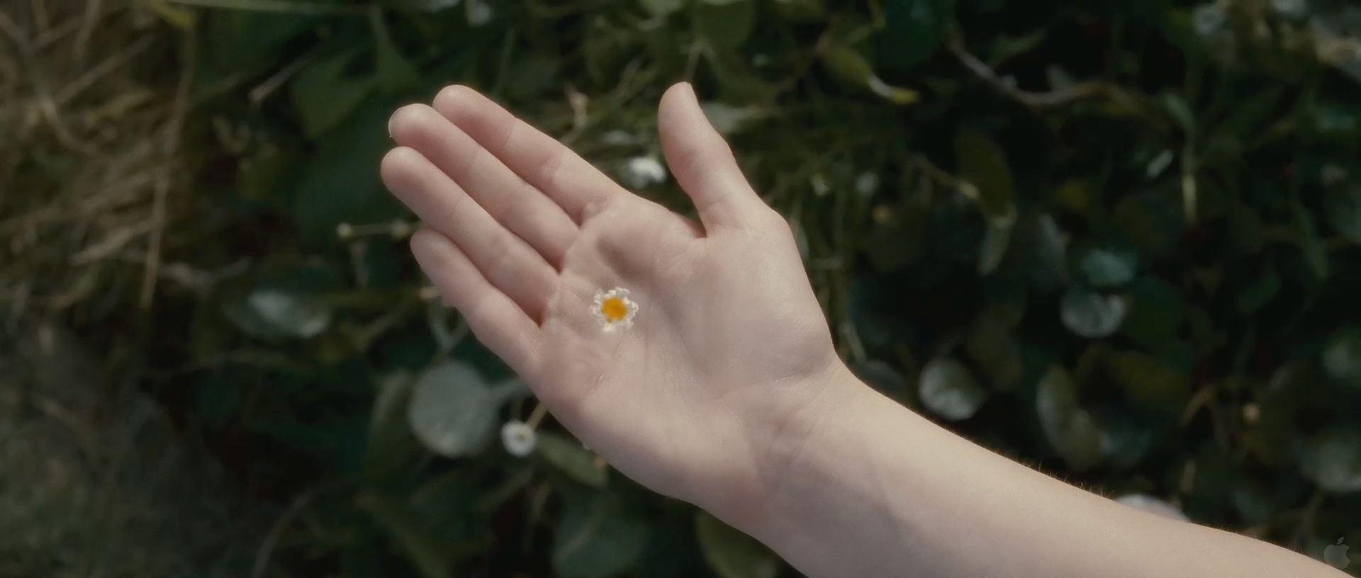 Harry Potter BlogHogwarts HP7 2 Trailer 04