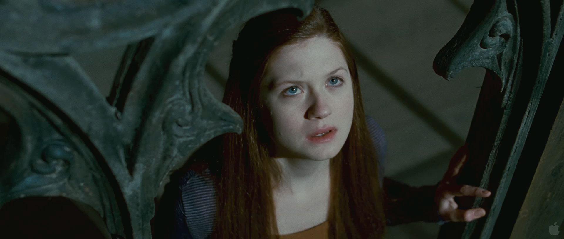 Harry Potter BlogHogwarts HP7 2 Trailer 54