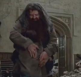Harry Potter BlogHogwarts Hagrid