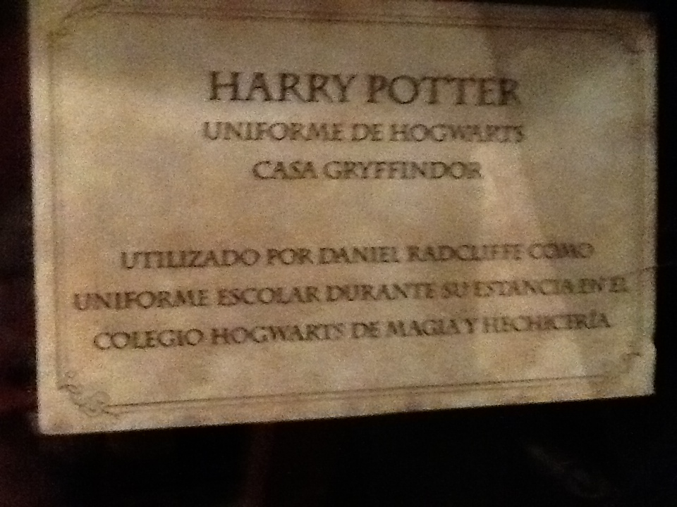 Harry Potter BlogHogwarts Expo Mexico (31)