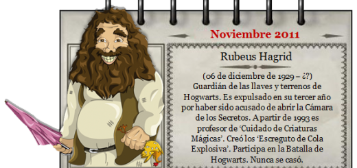 Harry Potter BlogHogwarts Mago de Noviembre
