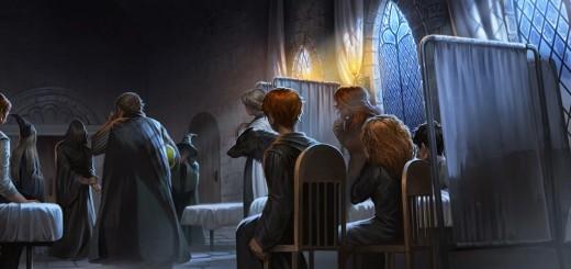 Harry Potter BlogHogwarts Caliz de Fuego Pottermore (15)