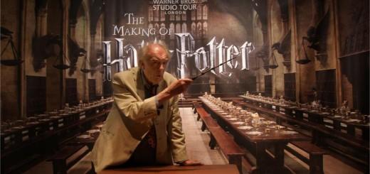 Harry Potter BlogHogwarts Albus Dumbledore Varita Sauco Celebracion