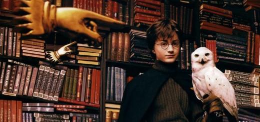 Harry Potter BlogHogwarts Sistema de Clasificación para Bibliotecas Escolares Mágicas