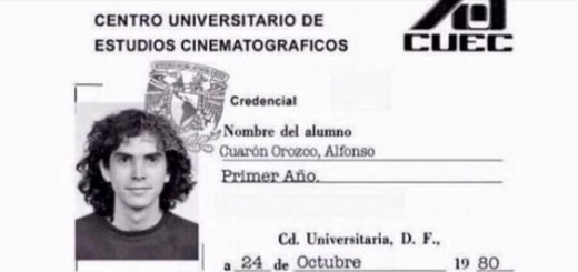 Harry Potter BlogHogwarts Alfonso Cuaron Credencial