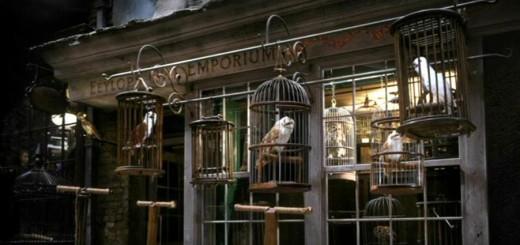 Harry Potter BlogHogwarts Lechuzas Tour Londres