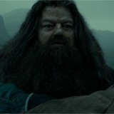 Harry Potter BlogHogwarts Rubeus Hagrid